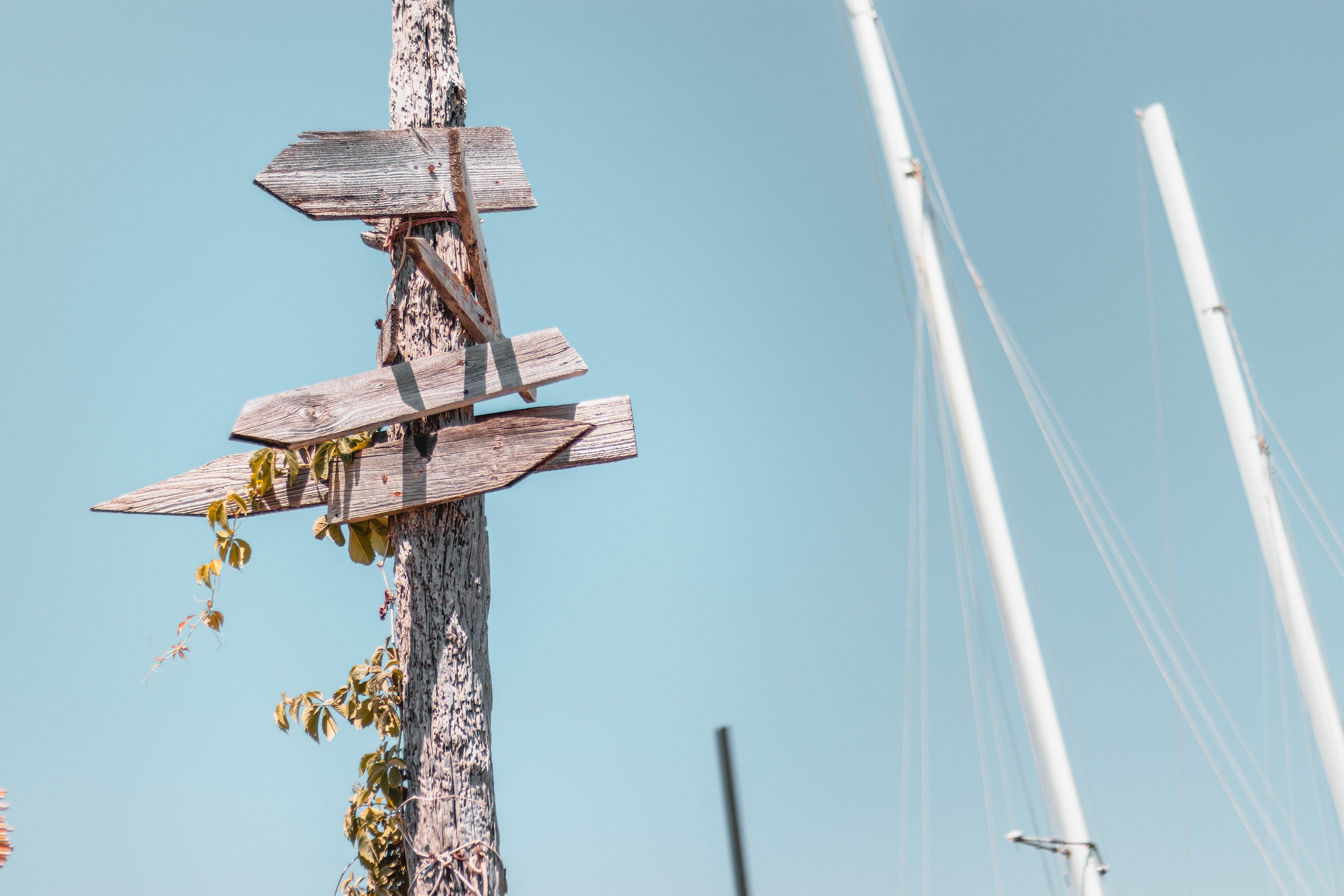 Ein hölzener Wegweiser mit mehreren Schilder, der an einem Baumstamm hängt.