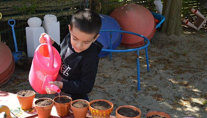 Kind beim Gießen der gepflanzten Sonnenblumen