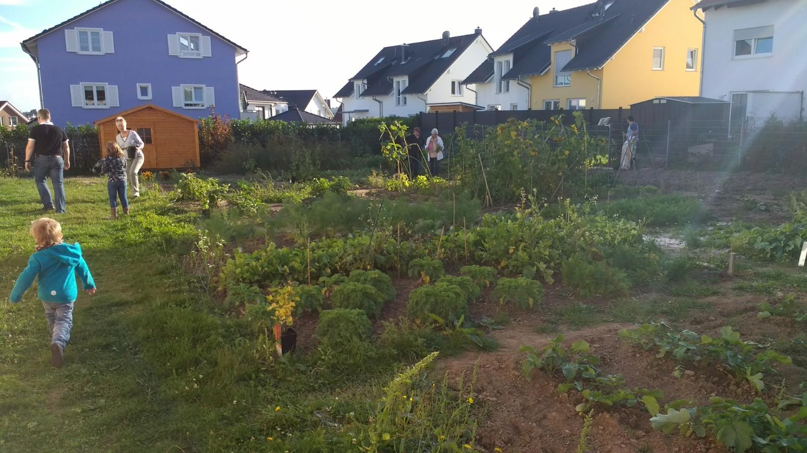 Vernetzungstreffen der Gartennutzer